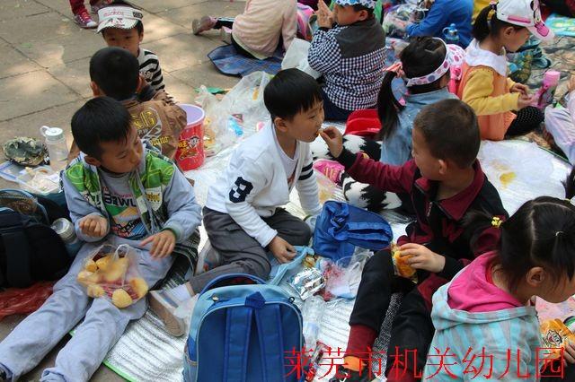 莱芜市机关幼儿园滨河园大一班春游活动